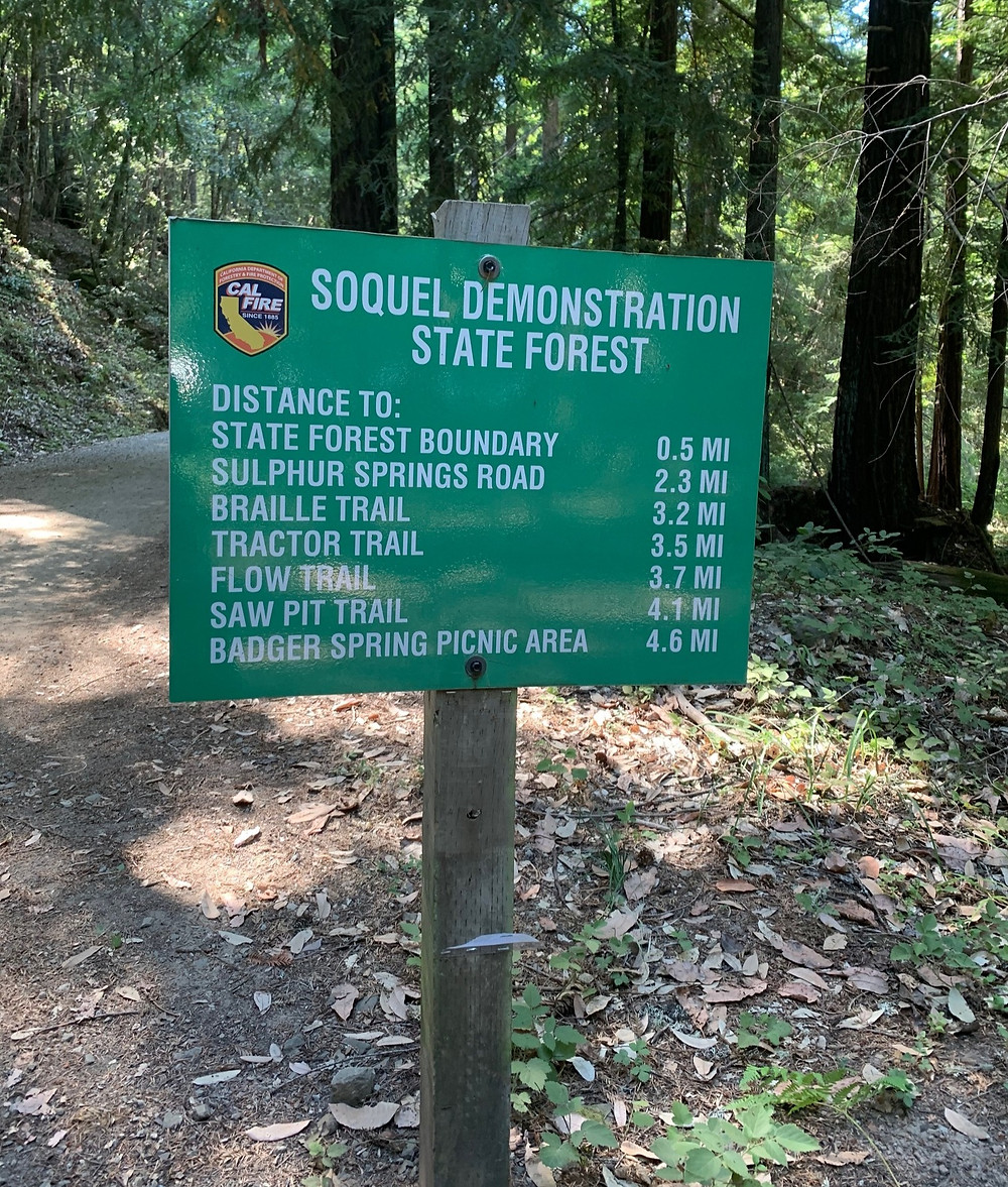 Soquel Demonstration State Forest