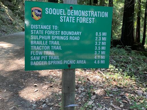 Soquel Demonstration Forest Flow Trail - California best mountain biking trail
