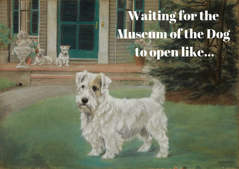 Museum Of The Dog Open In New York With World's Biggest Canine Fine Art Collection - Petdiary Dog Training Collars