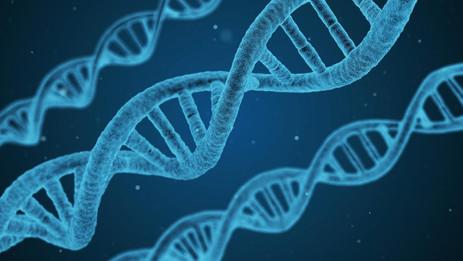 Protective Alzheimer's gene discovered,develop rapid drug testing platform