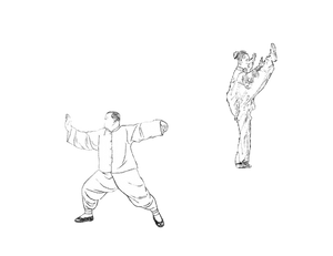 Blog by Taiji.sg - Differences between Traditional Tai Chi and Competition Forms
