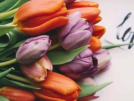 Вітаємо з святом весни 8 березня!