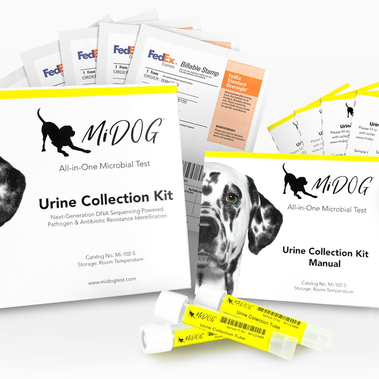 MiDOG® Announces All-in-One Microbial Test for Urinary Tract Infection Testing