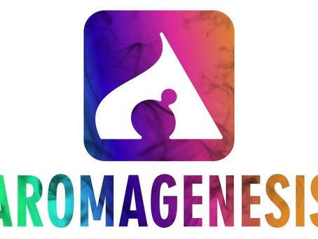 Aromagenesis Project Meeting in Dublin May 28th 2019
