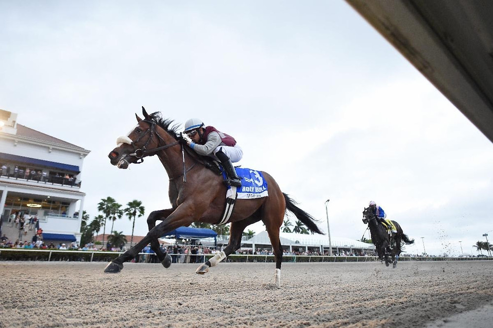 Belmont Stakes favorite Tiz the Law wins the Florida Derby