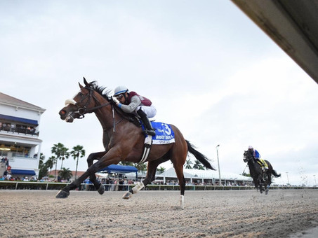 Meet the Horses in the 2020 Belmont Stakes