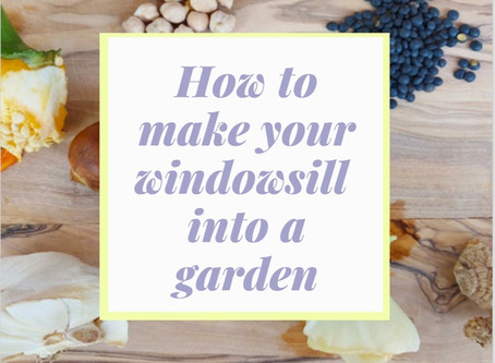 How to make your Windowsill into a Garden