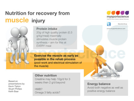Nutrition for recovery from muscle injury