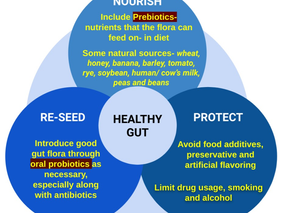 The garden that guards you from within- the Gut Microbiome