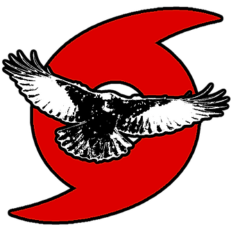 CROW disaster logo.png