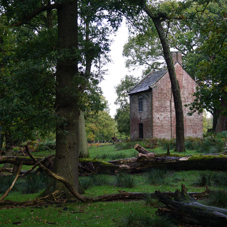 MLA-1 Reflections: Day trip to Dunham Massey and Tatton Park