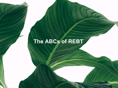 The ABCs of REBT: Short-Term Counseling with Lasting Results