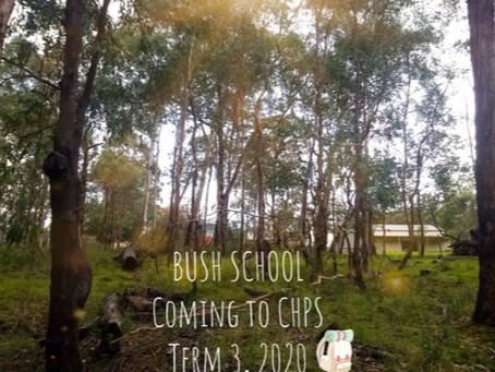 Launching Bush School