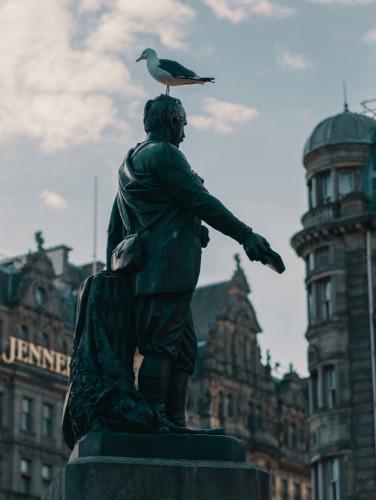 Bird perched atop a statue