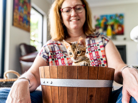 How adopting 3 kittens transformed a dog lover into an advocate for the Cats are Family campaign