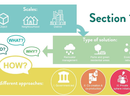 An Implementation Handbook for inclusive Nature Based Solutions Projects