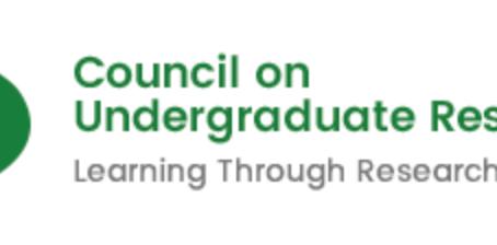 CUR Math/CS Division 2019 Faculty Mentor Award