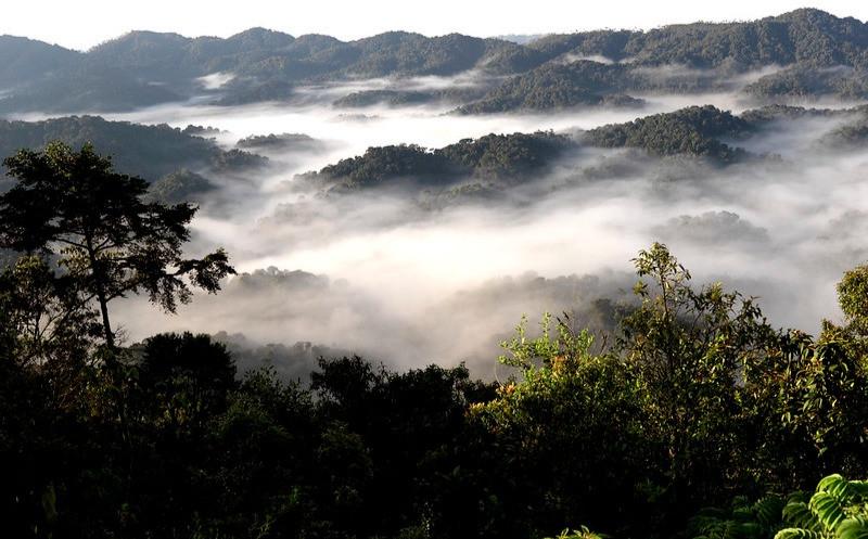 Undulating Hilly And Mountainous Terrain In Rwanda.