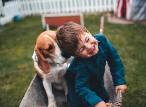 Влијанието на миленикот врз растот и развојот на детето