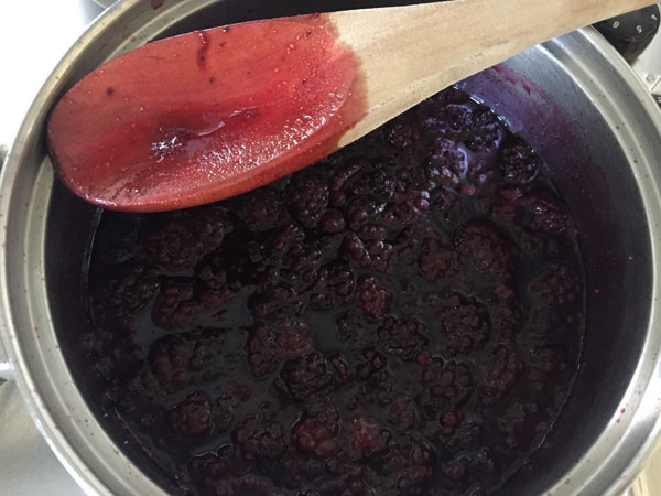 a pan with blackberries and water