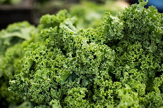 What Foods To Eat To Lose Belly Fat Kale