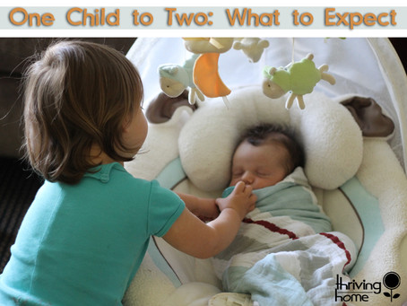 What to Expect When Transitioning from One Kid to Two