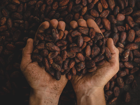 12 Important Things to Know Using Medicinal Cacao Against Depression and Anxiety