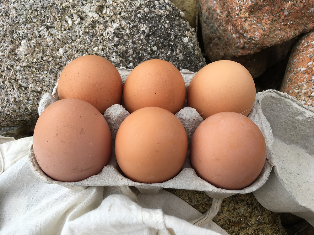 Locally sourced eggs from Scilly