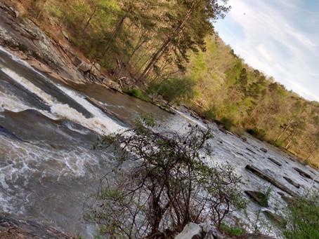 Escape from Coronavirus Quarantine: A rock in a river.