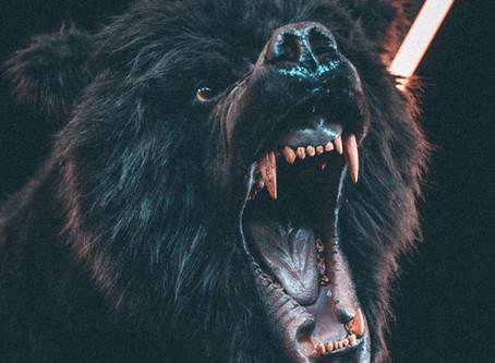 Alcuni consigli per chi prova spesso rabbia