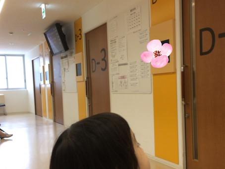 日赤受診の日☆