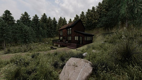 Project Update: Trent & Allie's Tiny Cabin in the Mountains
