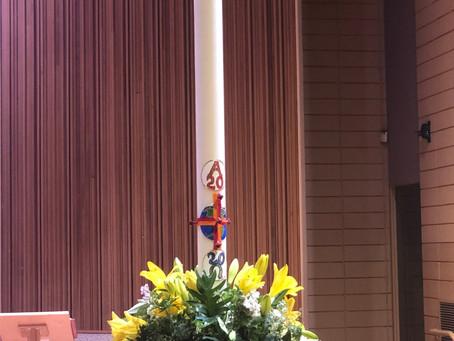 2º Dimanche de Pâques Dimanche de la Divine Miséricorde  Année Liturgique A