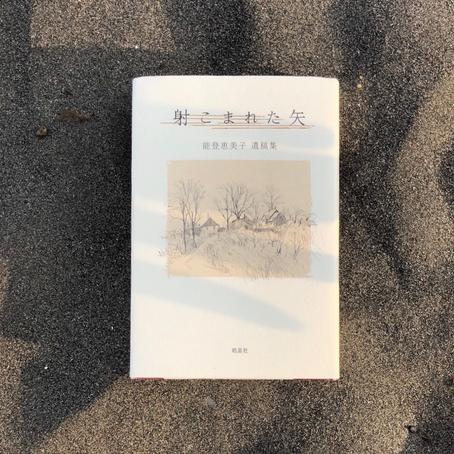 やわらかくひろげる ハンセン病文学を読む 第6回@東京
