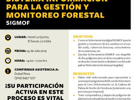 Introducción al Sistema Información para la Gestión y Monitoreo Forestal - SIGMOF