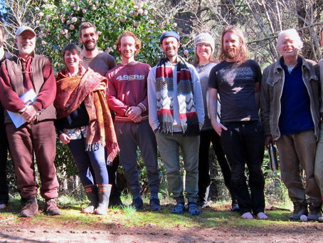 Amazing Opportunity: 3 Months Mindfulness Retreat for Young Adults