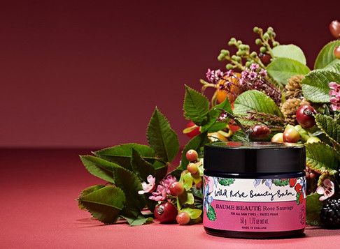 Wild Rose Beauty Balm is a one-pot         wonder for all!