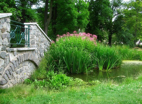 Zahrada, která posiluje energii