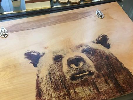 The Bear Desk