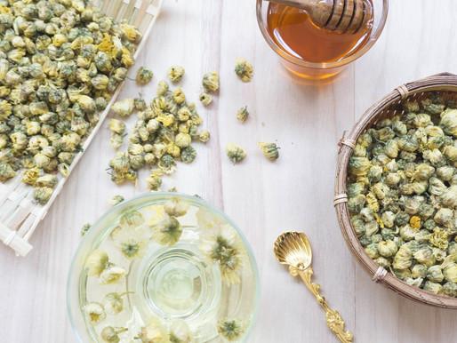 Baby Chrysanthemum Tea, A Health Benefit Drink