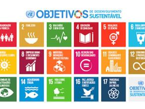 SDG's Globais