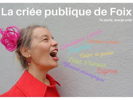Criée Publique de Foix #1
