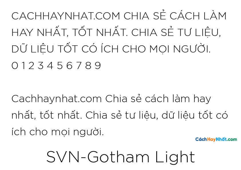 SVN-Gotham Light