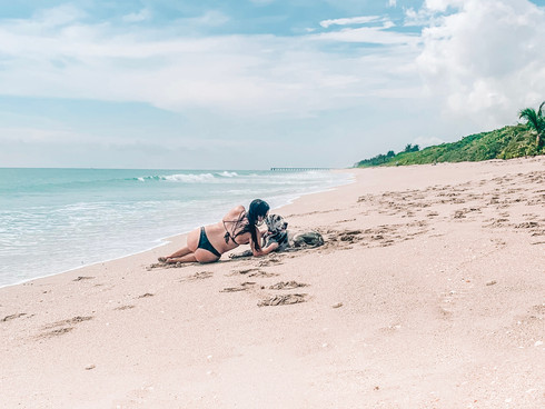 Best Dog Friendly Beach in Palm Beaches Florida