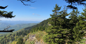 9.5 Mile Black Balsam Knob Hike