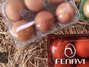 Cubetas Ecoamigables Acebri presentes en el Precongreso Virtual Avícola