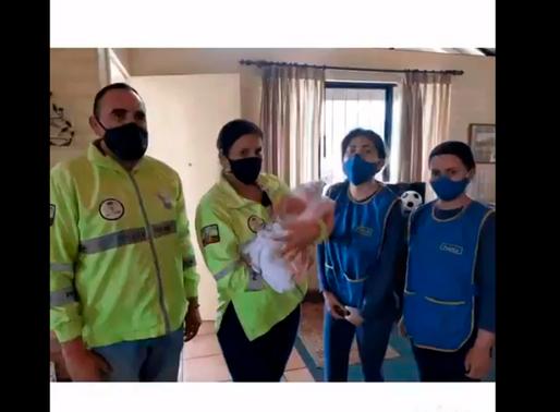 Rescatan a bebé abandonada dentro de una funda plástica al norte de Quito