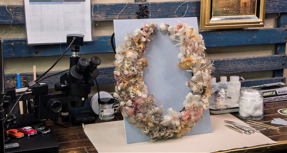 conservation and restoration of antique american feather wreath