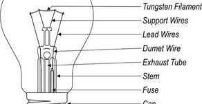 Bulb And Its Parts