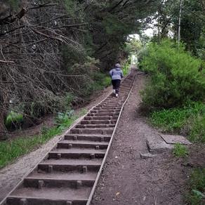 Absolute Beginner To Half Marathon Success!
